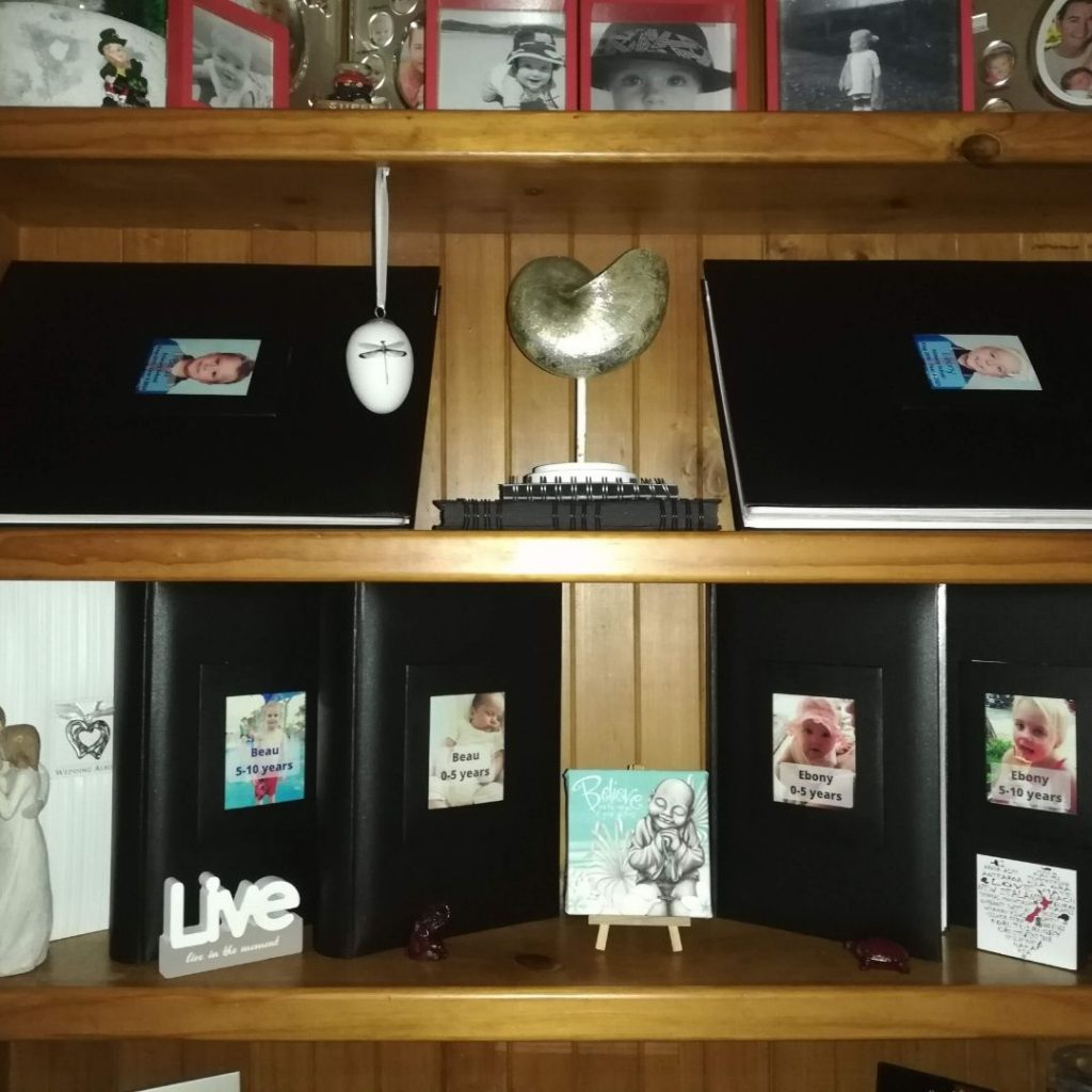 scrapbooks displayed in bookcase